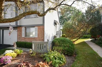 27W208  Providence Lane, Winfield, IL 60190 - MLS#: 09757581