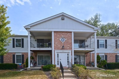 973 Golf Course Road UNIT 4, Crystal Lake, IL 60014 - #: 09757931