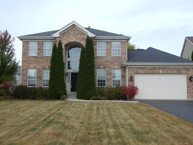 6719 Pine Lane, Carpentersville, IL 60110 - MLS#: 09757961