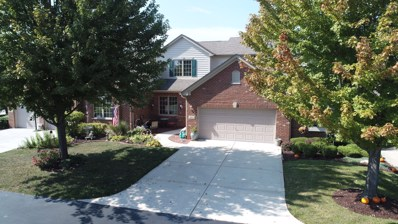 21172 Plank Trail Court, Frankfort, IL 60423 - MLS#: 09757966
