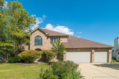 13309 Wellesley Circle, Plainfield, IL 60585 - MLS#: 09759439