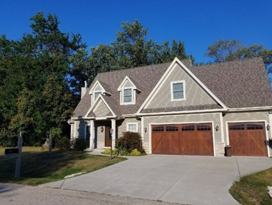 8792 Shade Tree Circle, Lakewood, IL 60014 - #: 09759450