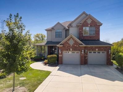 17516 BROOK CROSSING Drive, Orland Park, IL 60467 - MLS#: 09761274