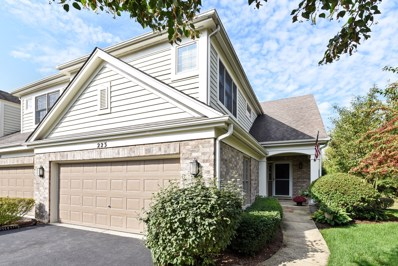 223 WILDFLOWER Lane, La Grange, IL 60525 - MLS#: 09762238