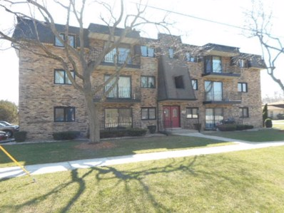 246 Vollmer Road UNIT B2, Chicago Heights, IL 60411 - MLS#: 09763322