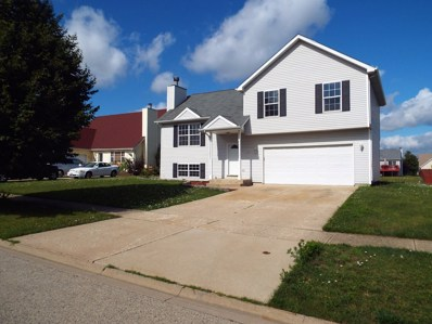 1107 Belden Way, Joliet, IL 60435 - #: 09764266