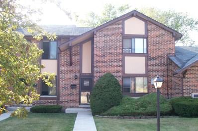 1S216  Ardmore Avenue, Villa Park, IL 60181 - #: 09765661