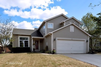865 Tallgrass Drive, Bartlett, IL 60103 - #: 09765978