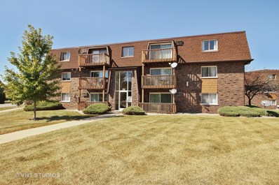 19398 Wolf Road UNIT 12, Mokena, IL 60448 - MLS#: 09766019