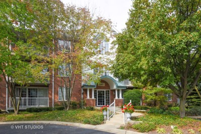 541 N HOUGH Street UNIT 304, Barrington, IL 60010 - MLS#: 09767541