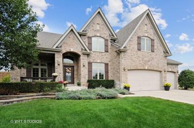 363 Andover Drive, Oswego, IL 60543 - MLS#: 09768745