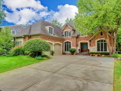 232 Grant Avenue, Clarendon Hills, IL 60514 - MLS#: 09768985