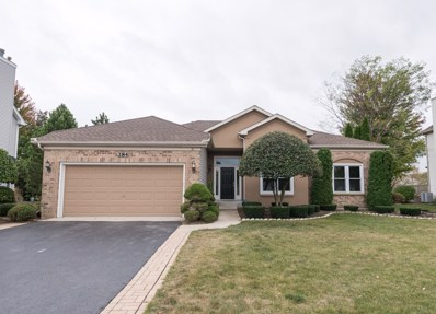 284 Morgan Valley Drive, Oswego, IL 60543 - MLS#: 09769670