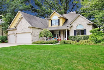 26626 S Overland Drive, Channahon, IL 60410 - #: 09771512