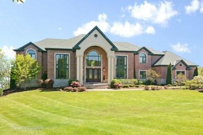 61 Deer Point Drive, Hawthorn Woods, IL 60047 - MLS#: 09772524