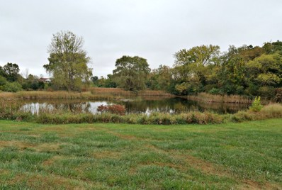11125 Frontage Road, Woodstock, IL 60098 - MLS#: 09774227