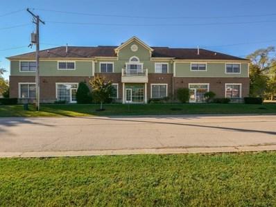 19235 WOLF Road UNIT 200, Mokena, IL 60448 - MLS#: 09774613