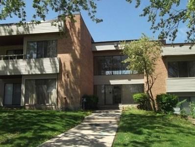 1205 N Sterling Avenue UNIT 206, Palatine, IL 60067 - MLS#: 09775658