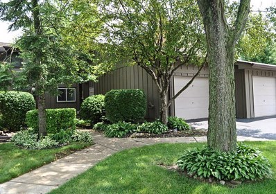 2S435  Emerald Green Drive UNIT 40-D, Warrenville, IL 60555 - #: 09777035