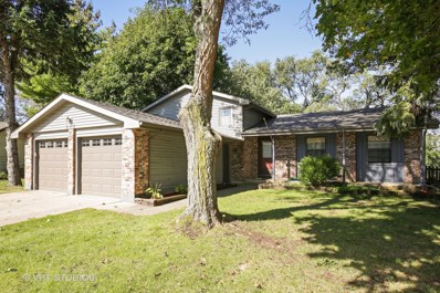 313 N Bromley Drive, Mchenry, IL 60050 - #: 09777303