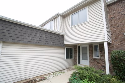 228 Douglass Way, Bolingbrook, IL 60440 - MLS#: 09777384