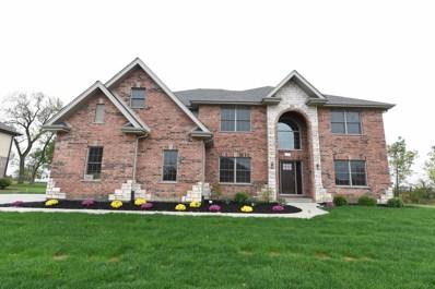 22682 Nature Creek Circle, Frankfort, IL 60423 - #: 09777431