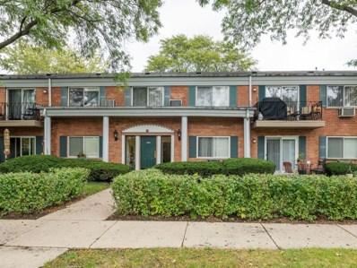 2307 S GOEBBERT Road UNIT 207, Arlington Heights, IL 60005 - #: 09779193