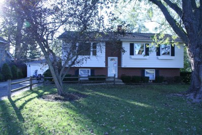 1007 Madison Avenue, Wauconda, IL 60084 - MLS#: 09779621