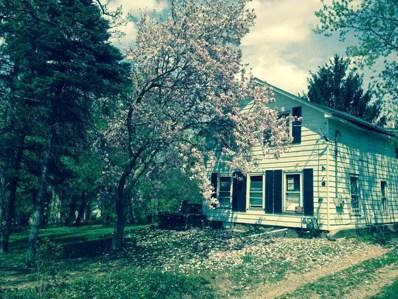 4910 Barnard Mill Road, Ringwood, IL 60072 - #: 09779838