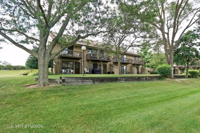 65 Aspen Colony UNIT 3, Fox Lake, IL 60020 - MLS#: 09779988
