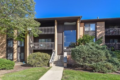 6105 KNOLL VALLEY Drive UNIT 23-304, Willowbrook, IL 60527 - MLS#: 09780614