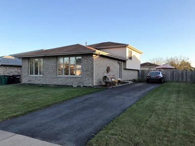9233 169th Place, Orland Hills, IL 60487 - MLS#: 09781966