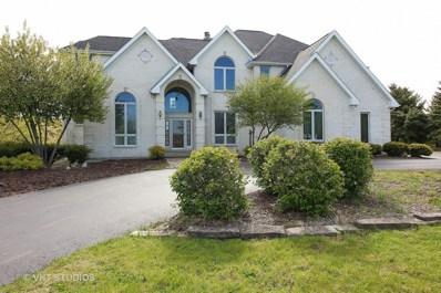 7002 Prairie Drive, Spring Grove, IL 60081 - #: 09782007