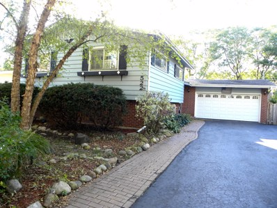 522 S 7th Street, West Dundee, IL 60118 - #: 09782056
