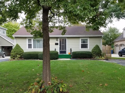 419 Phillippa Street, Hinsdale, IL 60521 - MLS#: 09782134