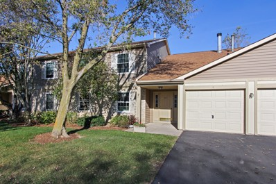221 Brett Circle UNIT C, Wauconda, IL 60084 - MLS#: 09784265