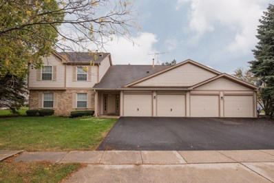 1101 Canterbury Court UNIT D, Elgin, IL 60120 - MLS#: 09784573