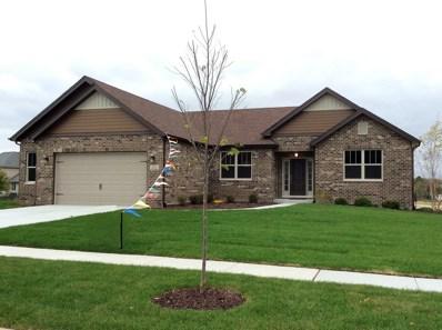 21018 Lakewoods Lane, Shorewood, IL 60404 - MLS#: 09785588