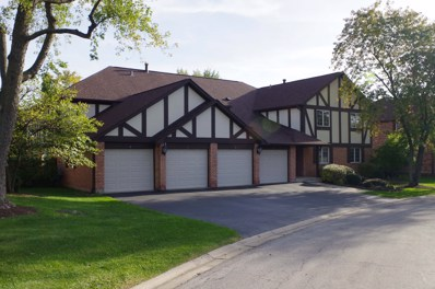 13 Sauk Trail UNIT 1, Indian Head Park, IL 60525 - MLS#: 09785640