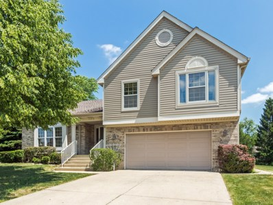 1173 N Clearwater Court, Palatine, IL 60067 - MLS#: 09786683