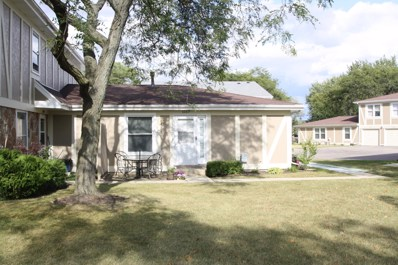 1117 Hampton Harbor UNIT 1117, Schaumburg, IL 60193 - MLS#: 09787753