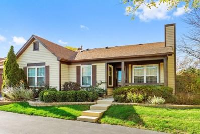 1800 Appaloosa Drive, Naperville, IL 60565 - MLS#: 09788005