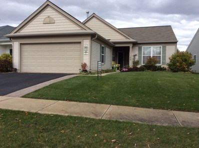 13616 Fallow Drive, Huntley, IL 60142 - #: 09791440