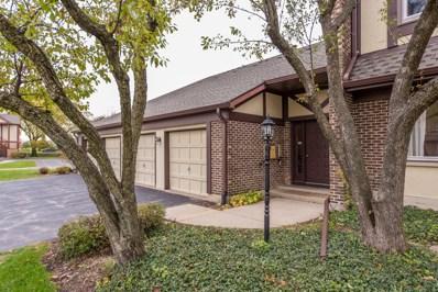 420 Ramblewood Drive UNIT B, Glen Ellyn, IL 60137 - MLS#: 09792751