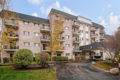 1000 S Lorraine Road UNIT 203, Wheaton, IL 60189 - MLS#: 09793461