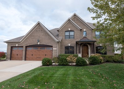 12829 Ridge Wood Lane, Plainfield, IL 60585 - MLS#: 09794487