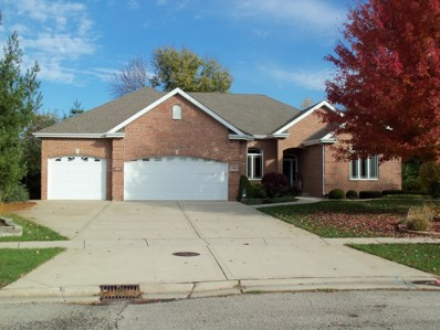 1640 Pebble Creek Drive, Morris, IL 60450 - MLS#: 09794869