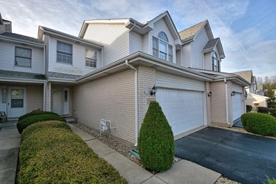 9969 Constitution Drive, Orland Park, IL 60462 - MLS#: 09795644