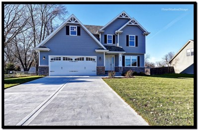 509 W Cross Street, Wilmington, IL 60481 - MLS#: 09795714