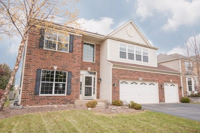 10786 Allegheny Pass, Huntley, IL 60142 - #: 09796396